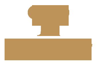Provocativeparty Logo